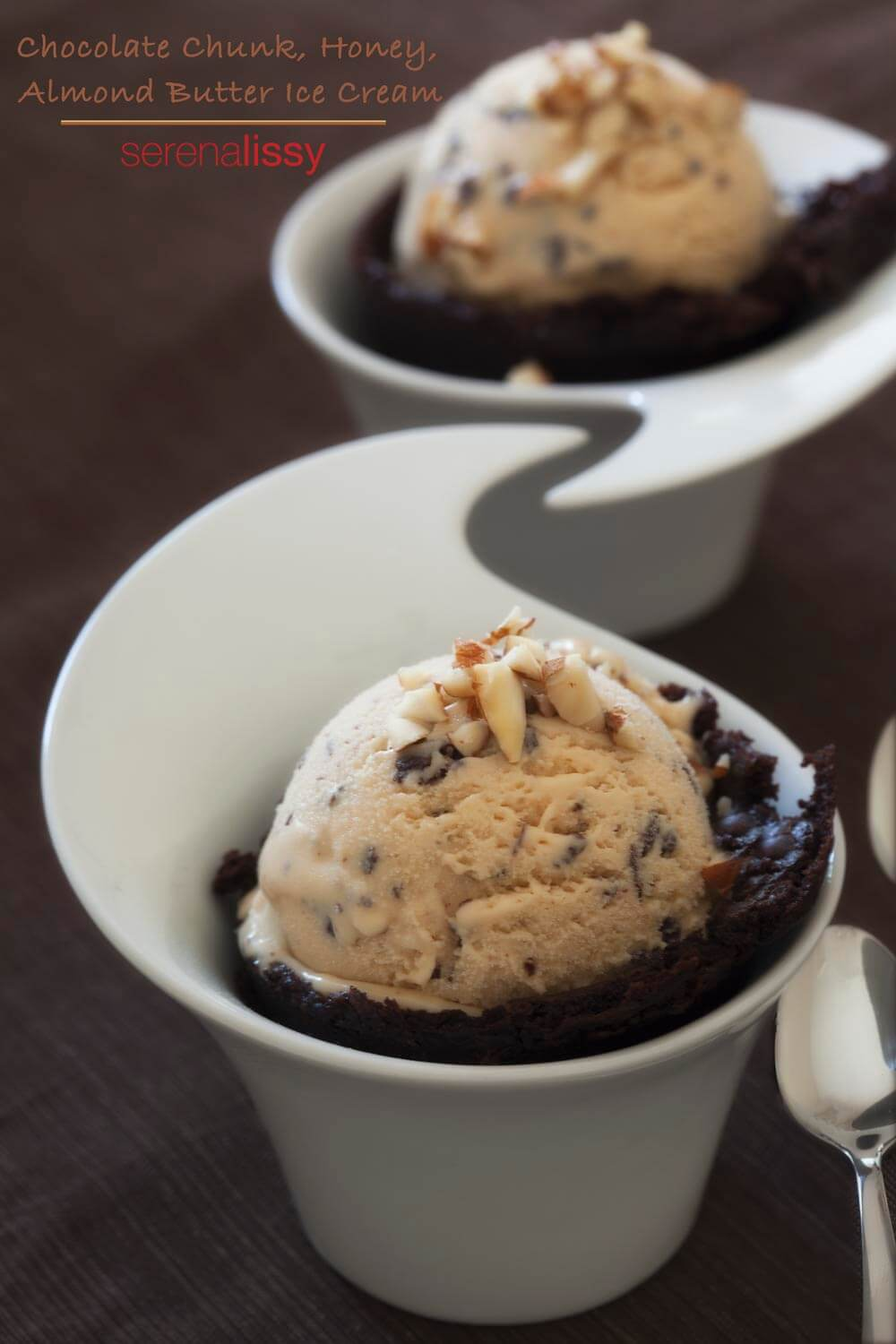 Chocolate Chunk Ice Cream