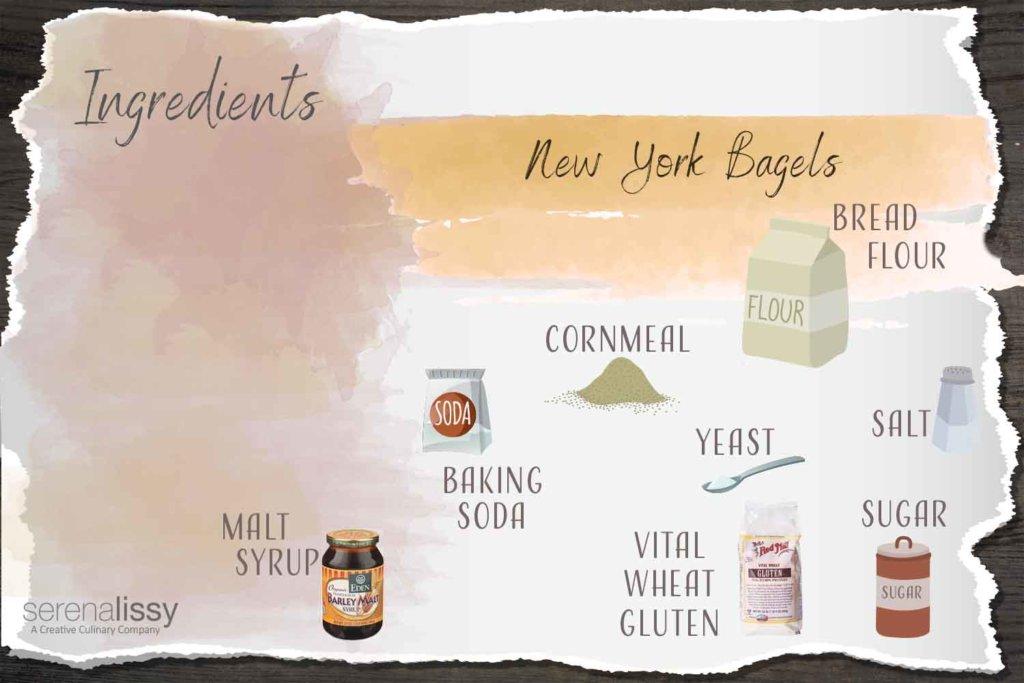 Homemade New York Bagels Ingredients