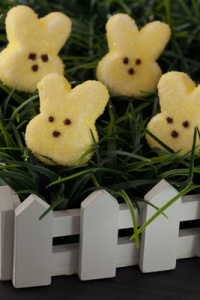 The Cutest Easter Peeps For Your Easter Basket