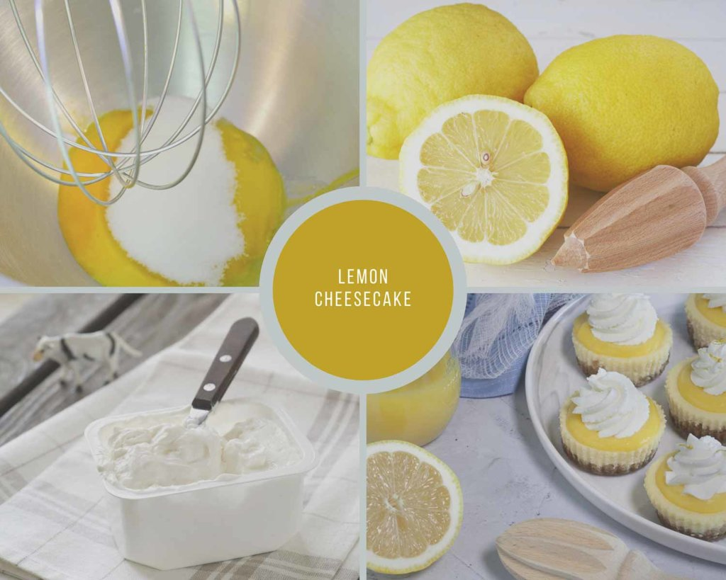 Lemon Cheesecake Process Steps