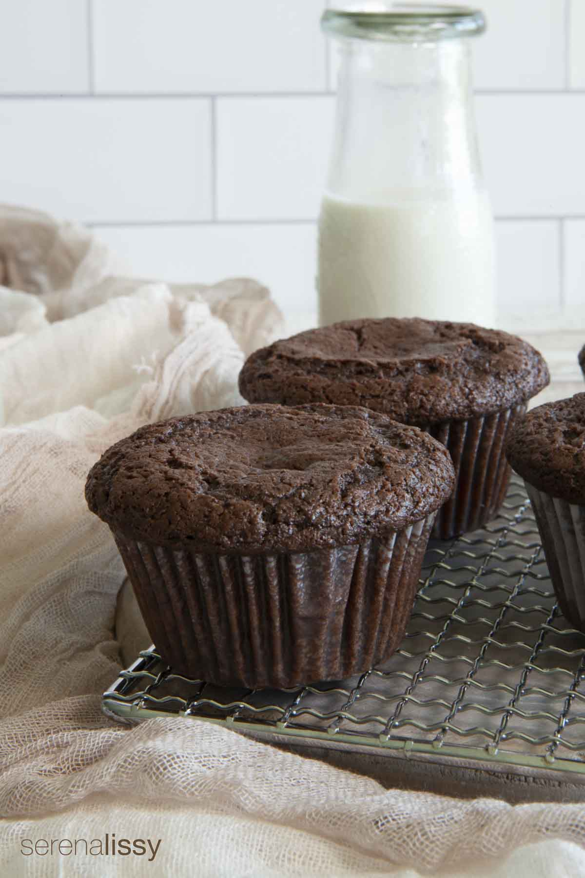 Chocolate muffins with milk